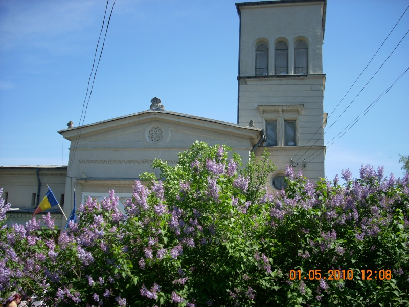 SĂRBĂTOAREA LILIACULUI la IAŞI -01 MAI 2010 Sarbat10