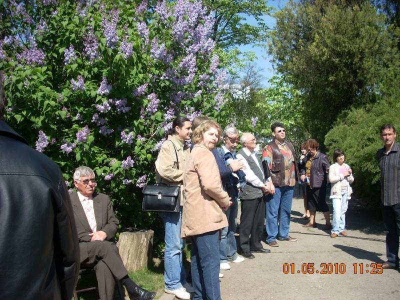 SĂRBĂTOAREA LILIACULUI la IAŞI -01 MAI 2010 Sarbat13