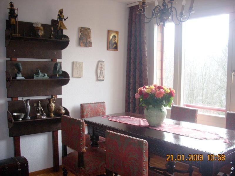 Amenajare locuinta  in stil baroc-Elvetia Sufrag12