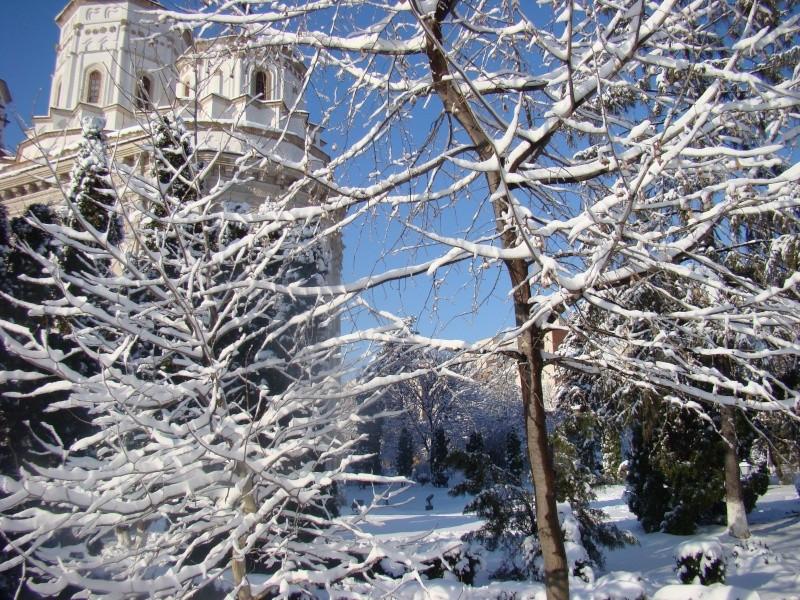 IASI-in vesminte de iarna Zapada17