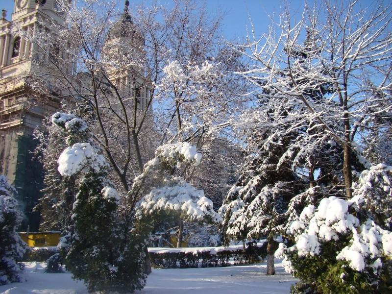 IASI-in vesminte de iarna Zapada35