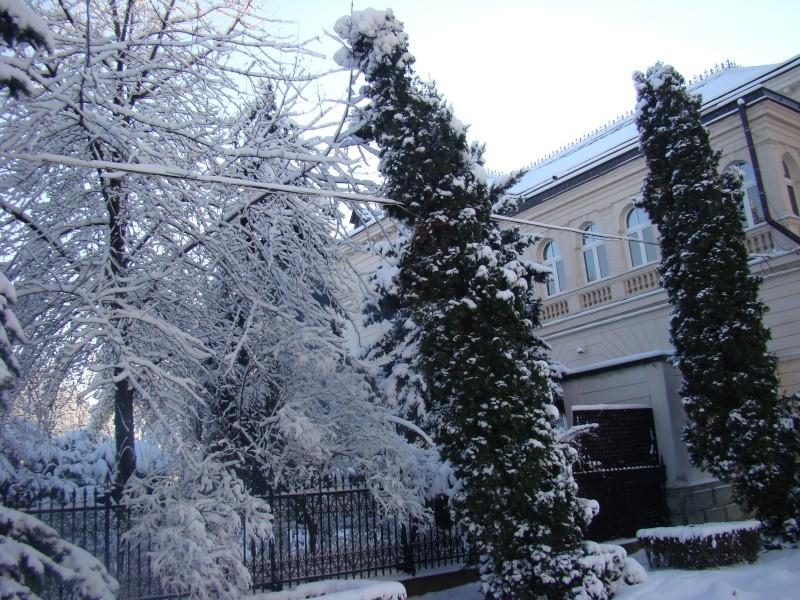 IASI-in vesminte de iarna Zapada38