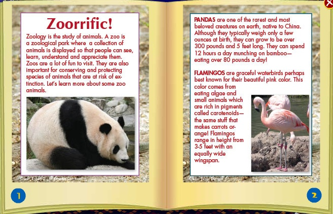 New Paws for Nature Magazine Friend36