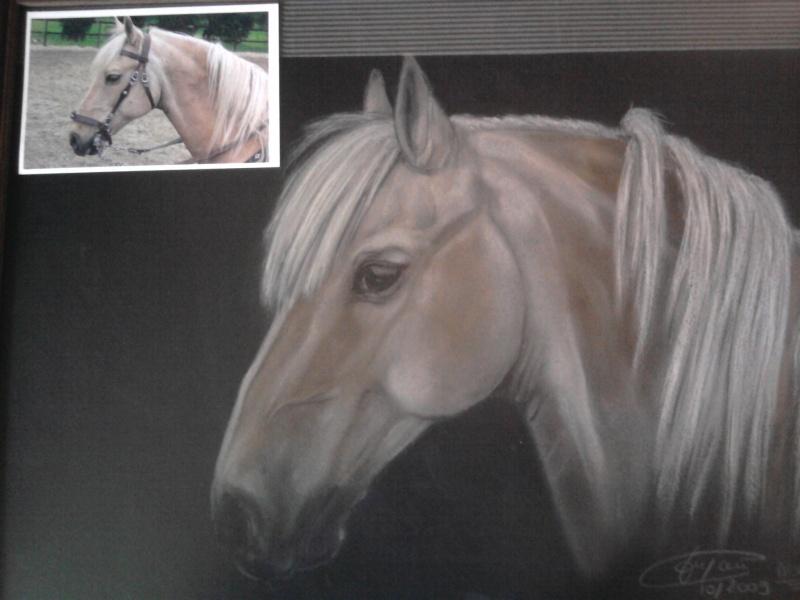 dessins de vos chevaux Photo062