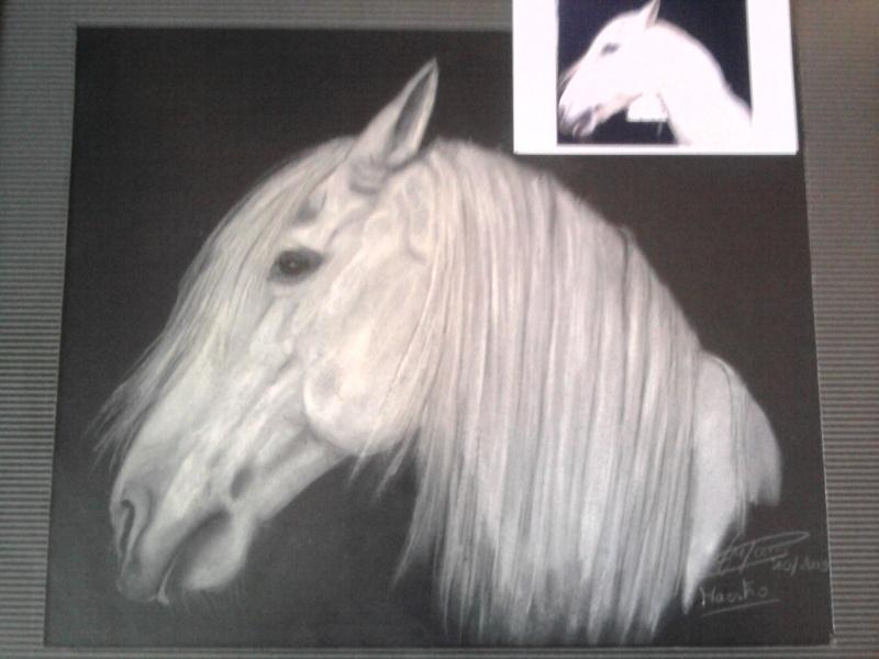 dessins de vos chevaux Photo063