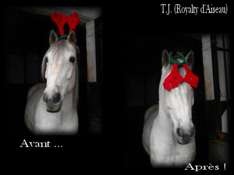 Joyeux Noël Tj_bmp10