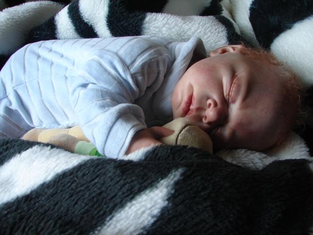 Les bébés de Tabatha - Page 5 Dsc02722
