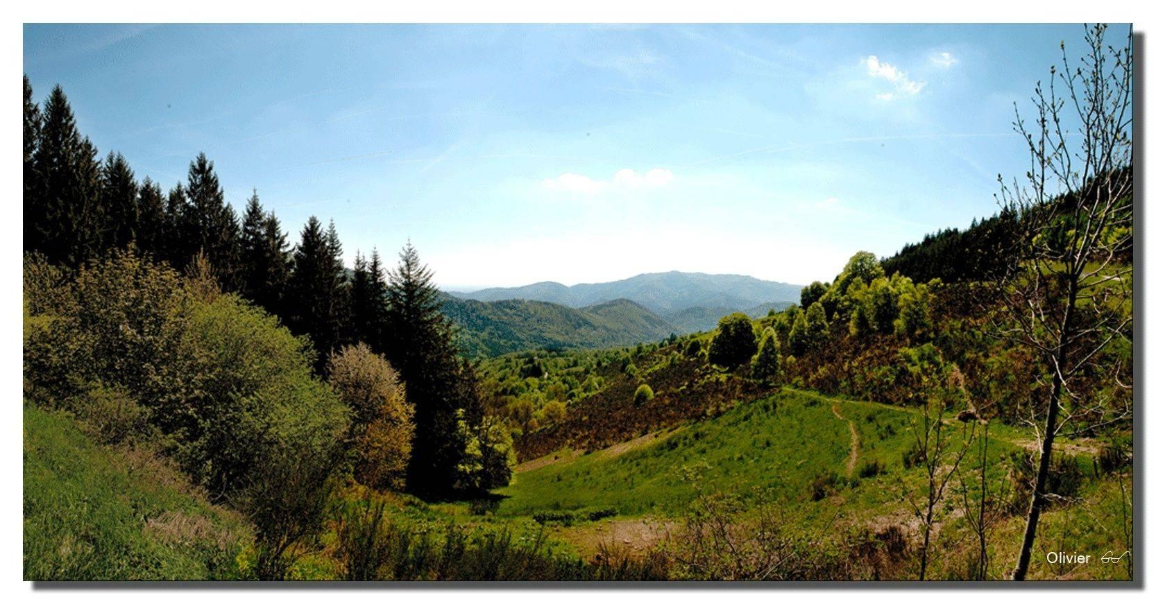 panorama des Vosges Panora12