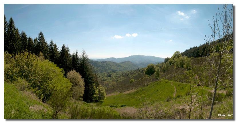 panorama des Vosges Vosges11