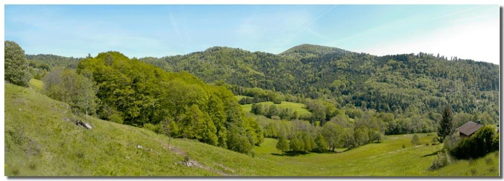 panorama des Vosges Vosges17