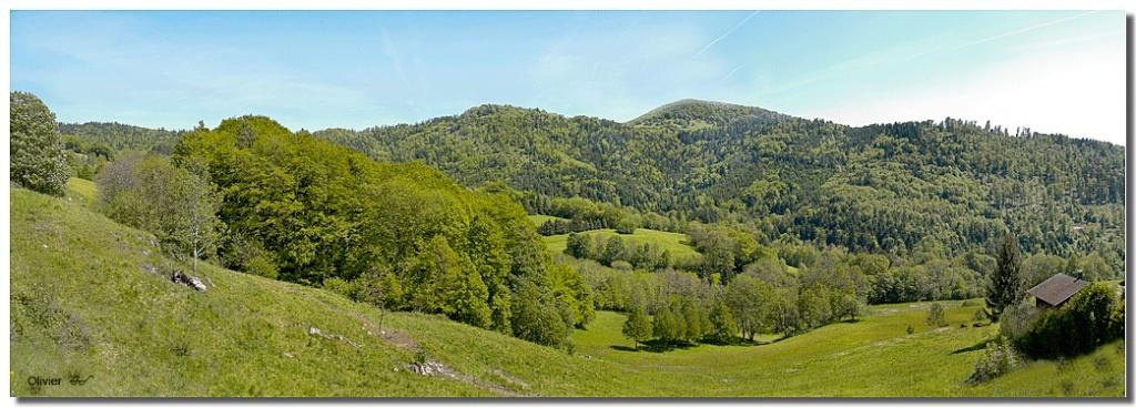 panorama des Vosges Vosges20