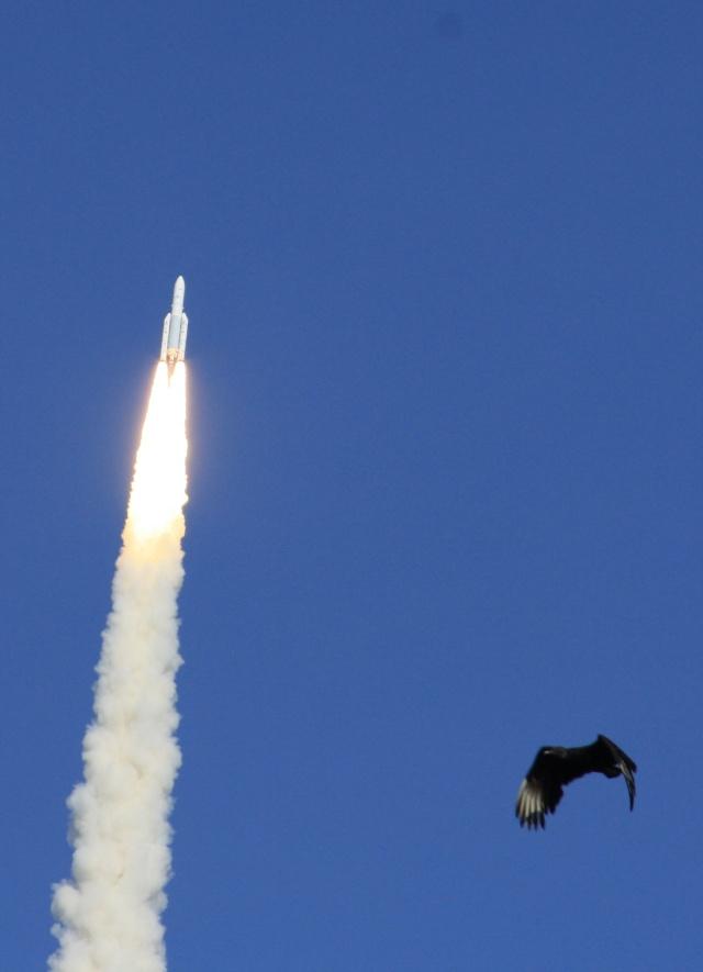 Ariane 5 ECA V198 / Hylas 1 + Intelsat 17 (26/11/2010) - Page 2 Img_2411