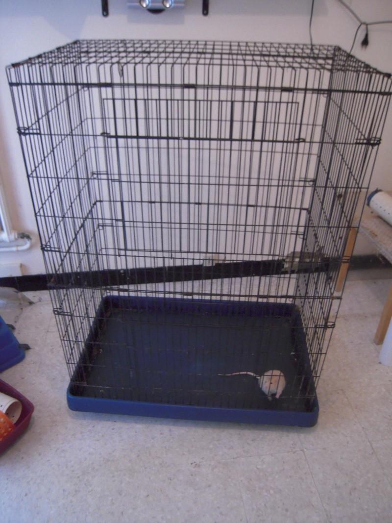 [Vend] cage 1m20 - 50€!!!! (34) Dscn5012