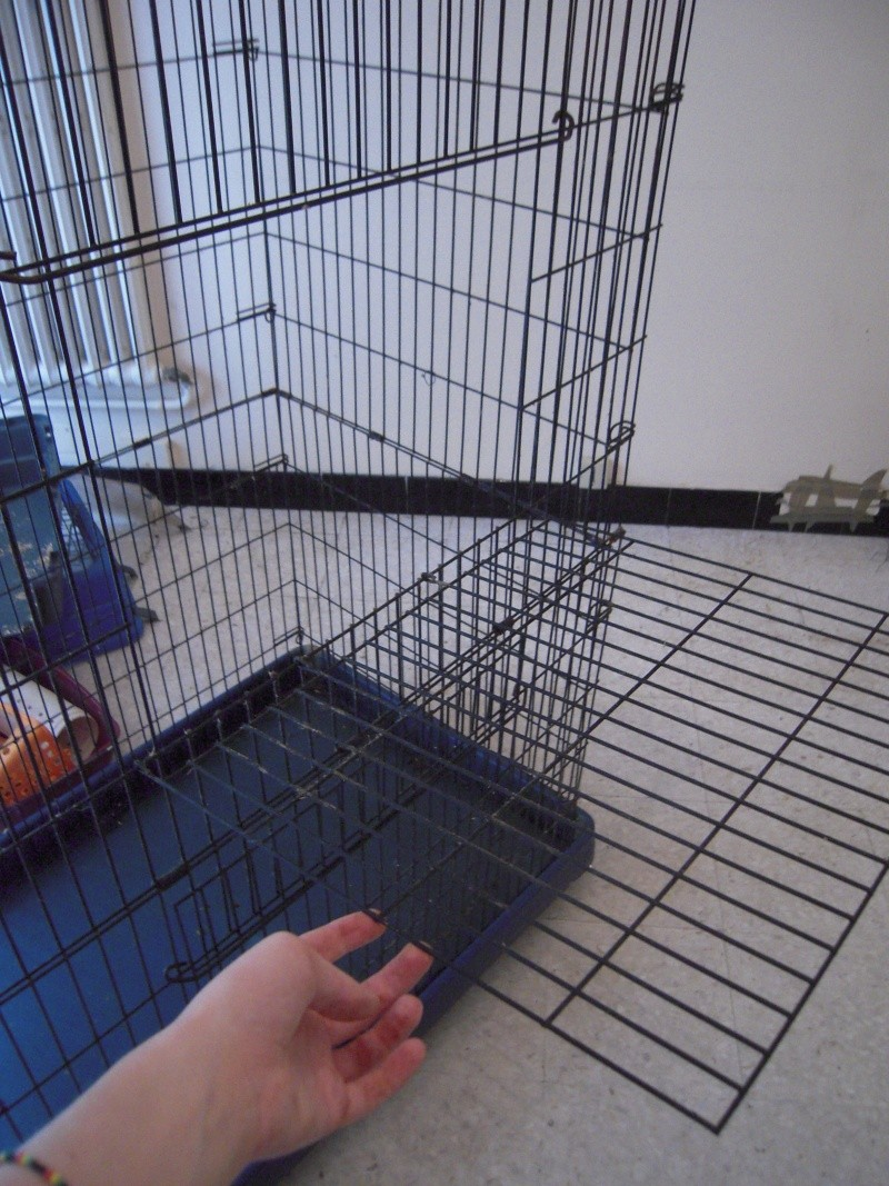 [Vend] cage 1m20 - 50€!!!! (34) Dscn5013