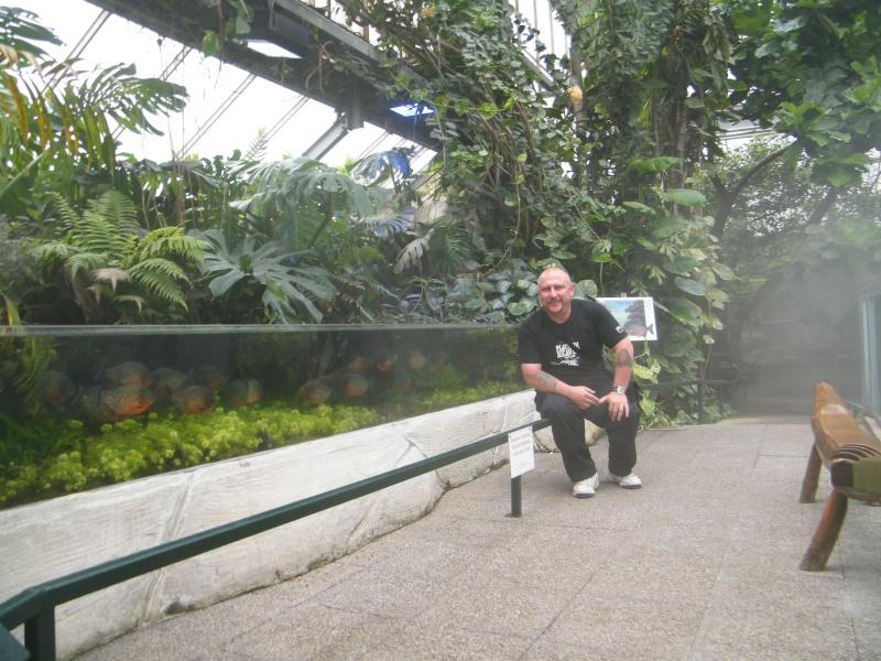 zoo de beauval Dscf0713