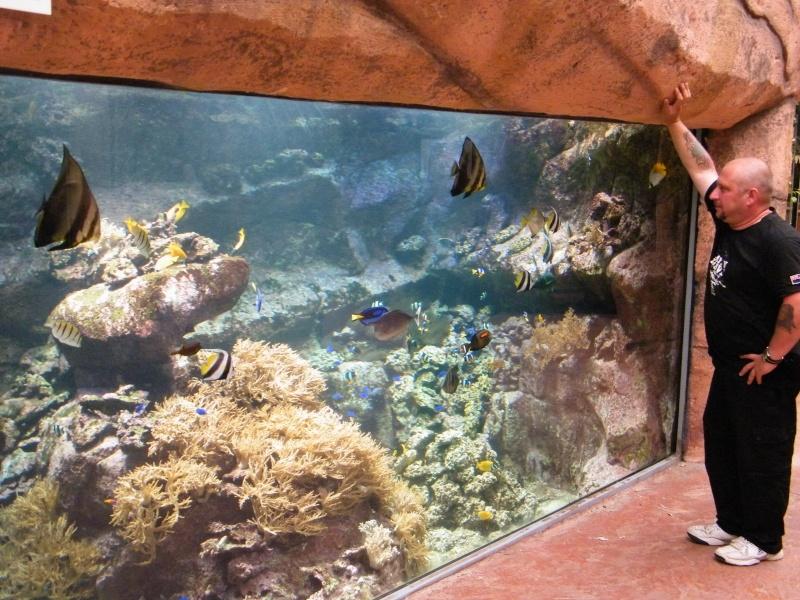 zoo de beauval Dscf0714