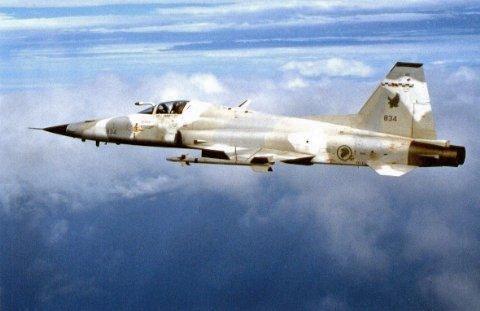 Northrop F 5 E   (Monogram / Revell   1/48)  FINI F-5e_r10