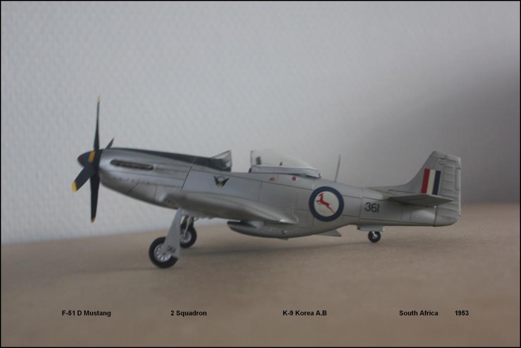 F 51 D  (Monogram  1/48) F51110