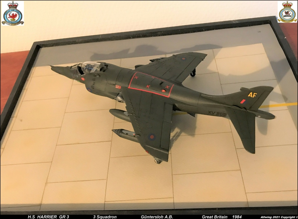 H.S.  HARRIER GR 3    ( AIRFIX  1/48)  FINI - Page 4 Img_0215