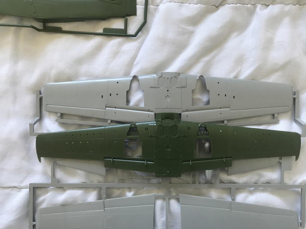 SKYRAIDER  AEW 1  (ESCI/ ITALERI 1/48)   FINI Img_0553
