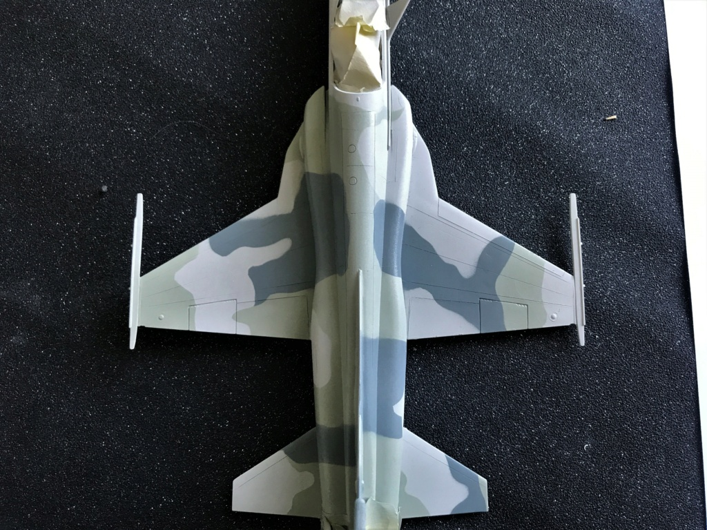 Northrop F 5 E   (Monogram / Revell   1/48)  FINI - Page 2 Img_2227