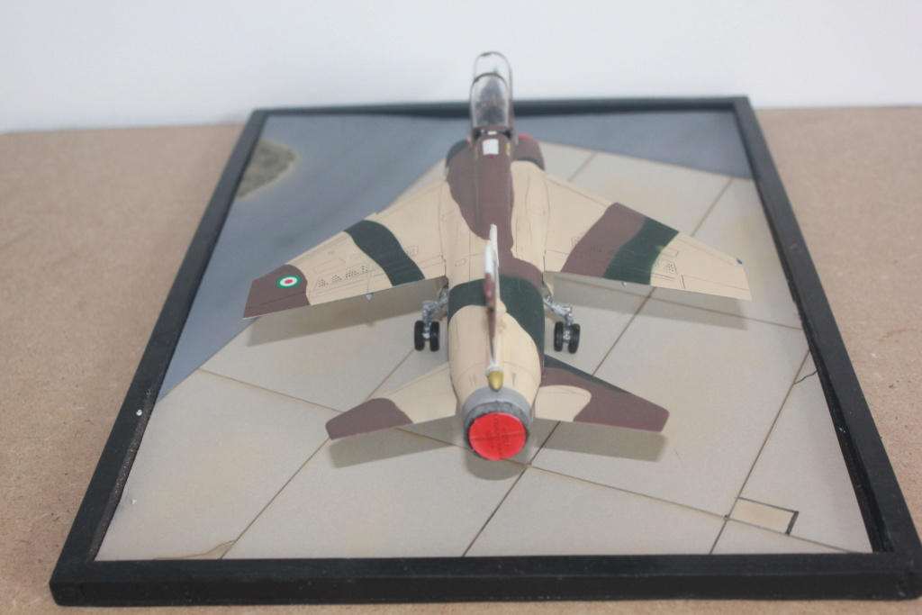 Mirage F1 B  ( F.M.  1/48)  FINI - Page 2 Img_5347