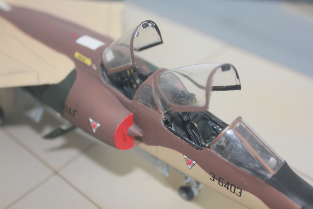 Mirage F1 B  ( F.M.  1/48)  FINI - Page 2 Img_5348