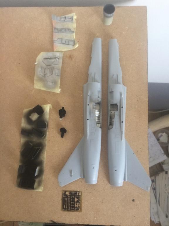 Mirage F1 B  ( F.M.  1/48)  FINI Img_7010