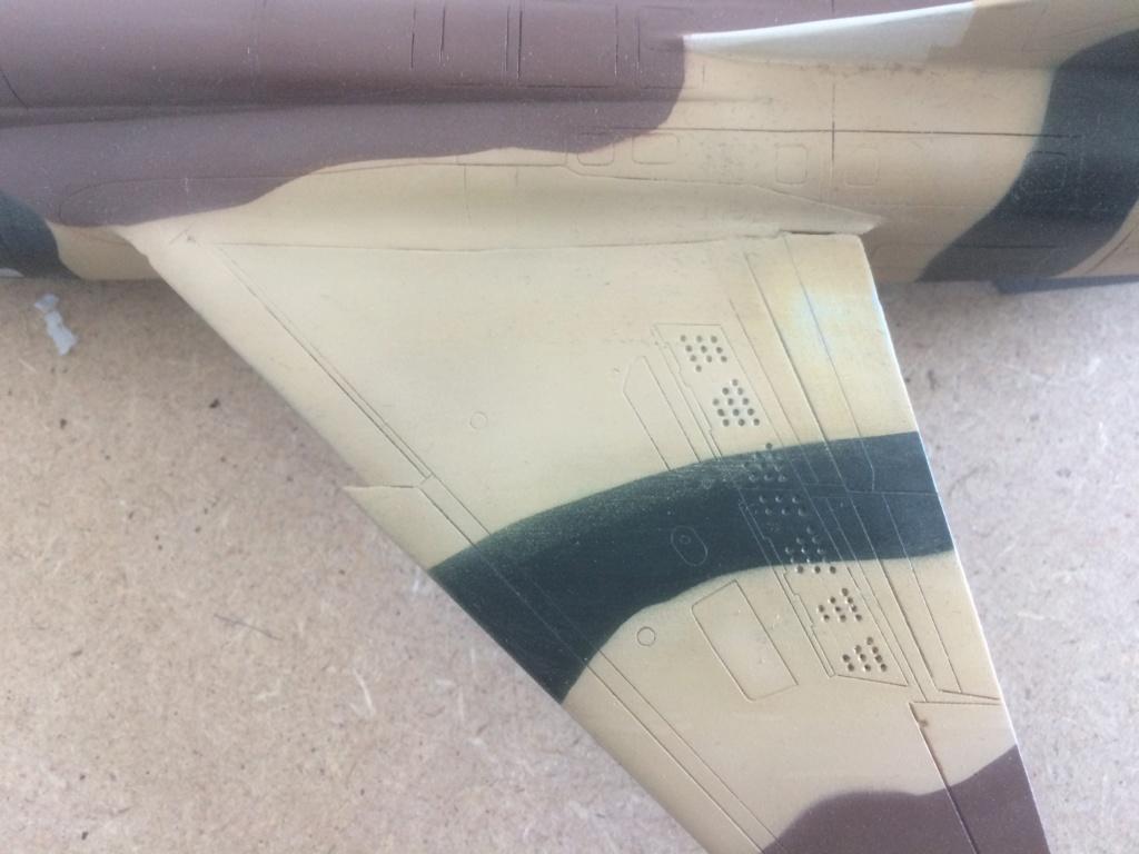 Mirage F1 B  ( F.M.  1/48)  FINI - Page 2 Img_7119