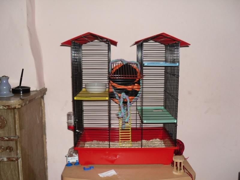 [A échanger/Charleroi] Cage à hamster contre cage pour rat La_cag17