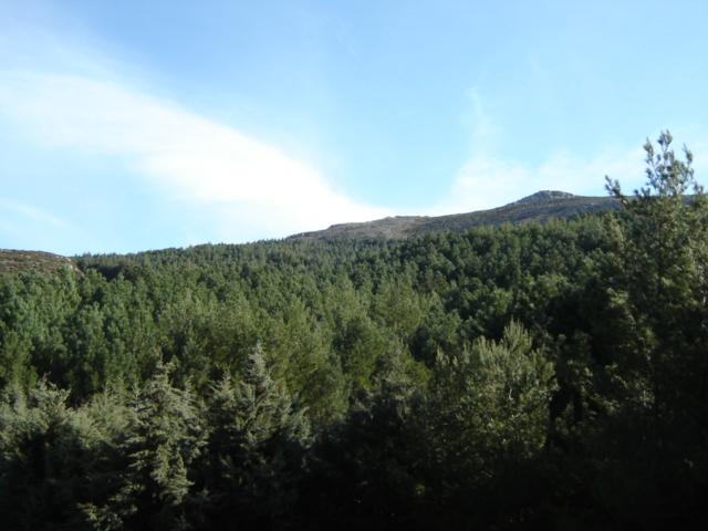 Πεζοπορία στην κορυφή του Προφήτη Ηλία. Dsc00110