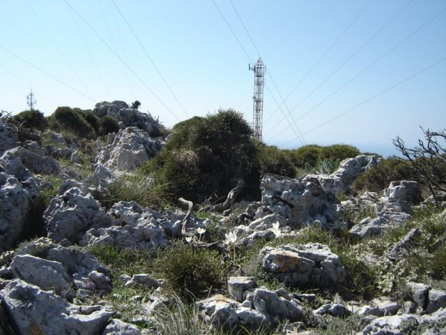 Πεζοπορία στην κορυφή του Προφήτη Ηλία. Dsc02910