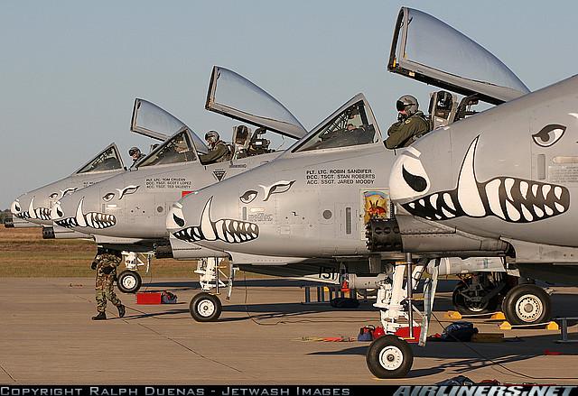 A-10a Thunderbolt II 47th fighter Sqd   Italeri 1-48 14157110