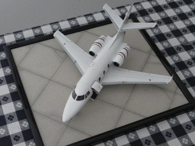 Dassault Falcon 10   1-48 (Revell) - Page 2 P1040523