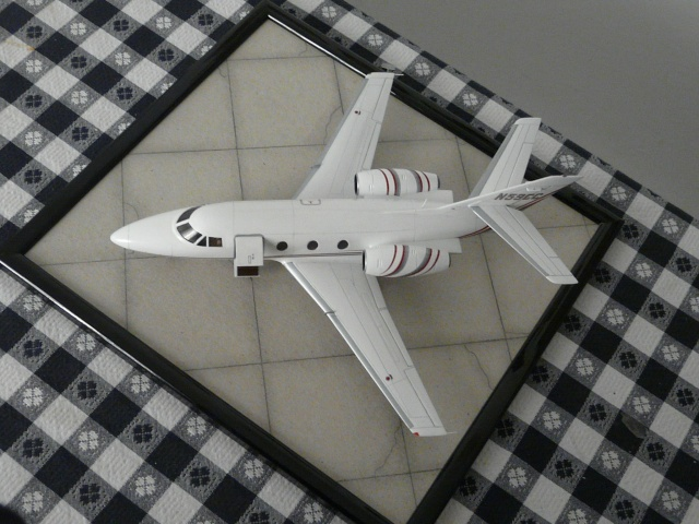 Dassault Falcon 10   1-48 (Revell) - Page 2 P1040524