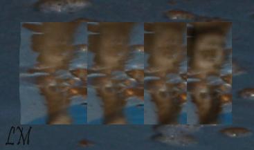 visages cachés Cactus11