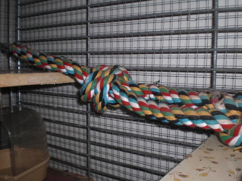 Idée avec une corde Cimg3910