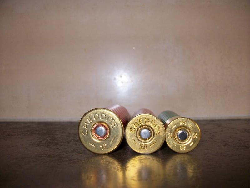Petits calibres 20, 28 et 410 Imgp0240