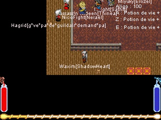 Screenshots en tout genre Guilde11