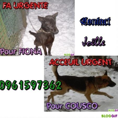 COUSCO et FIONA  URGENT Acceui11