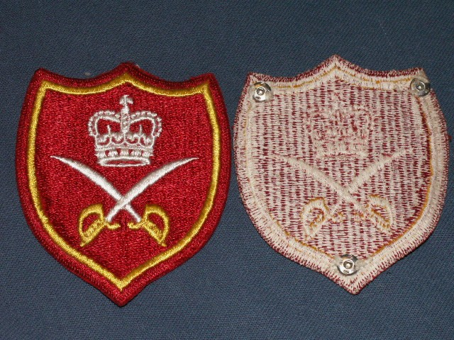 QC Physical Training Instructor Patches Pict0041