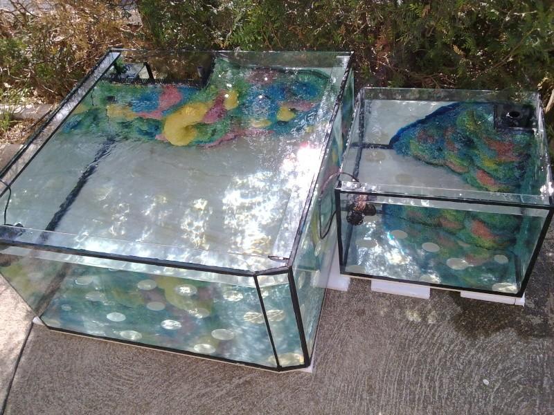 réalisation d'un aquarium et son décor en mousse polyurétane résiné - Page 2 26042011