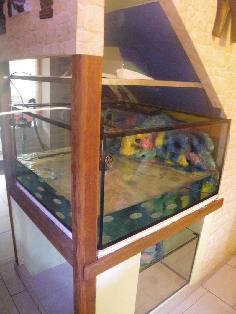réalisation d'un aquarium et son décor en mousse polyurétane résiné - Page 2 Imgp0010