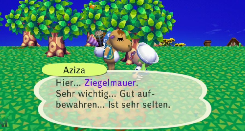 Ich habe von Aziza einen/eine ... erhalten. Ziegel11