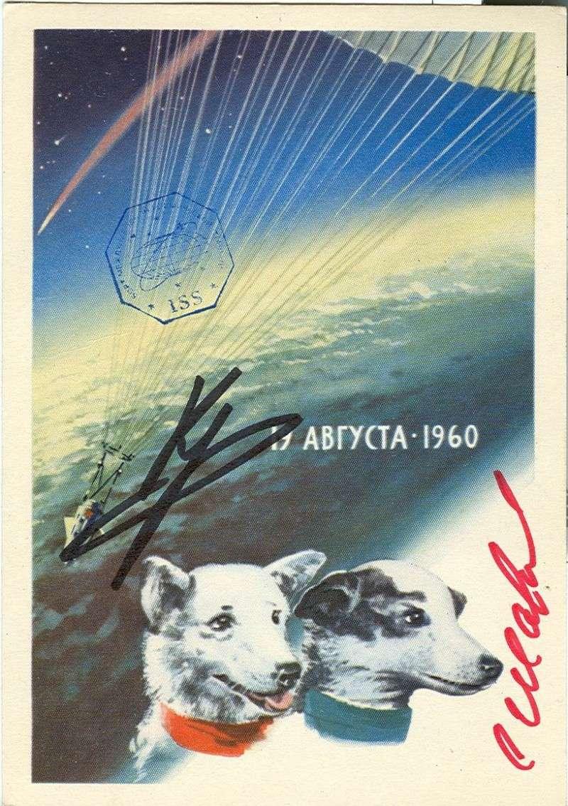 Il y a cinquante ans : Les chiens Belka et Strelka Belka_12