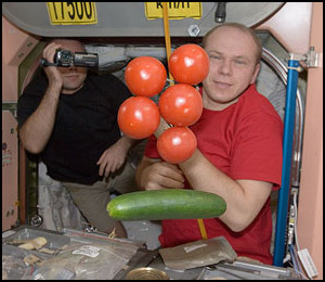 La cuisine à bord de la Station Spatiale Internationale Iss02211