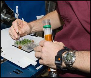 La science à bord de l'ISS - Page 5 Iss02314