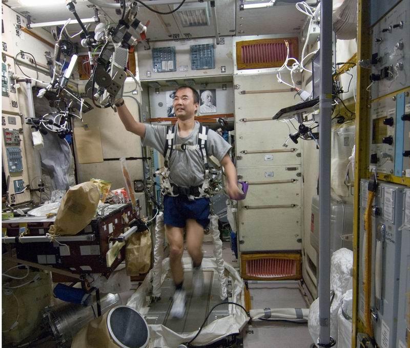 Japon : annonce d'un mission longue durée pour Soichi Noguchi en 2009 Redim104