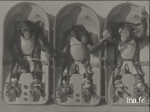 les animaux spatiaux Vlcsn589