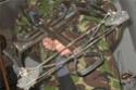 "Reverse limb ""Test"" crossbow D89ac910"